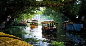 Star of Alleppey-Floating market of Driven